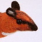 Greater chevrotain